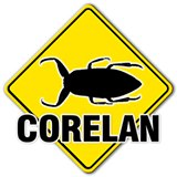 Corelan Security